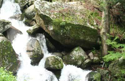 那智の滝4.jpg